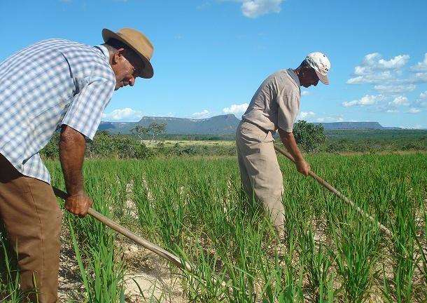 reforço para agricultura