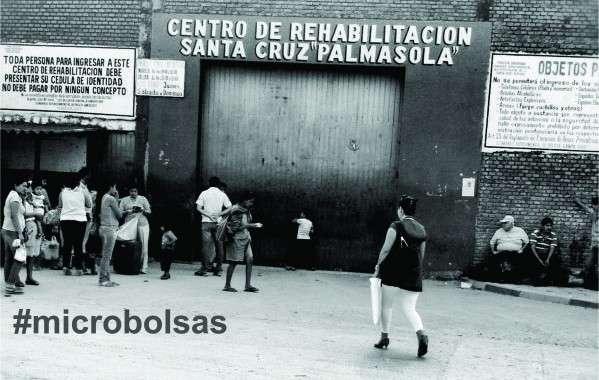 microbolsas21-599x380