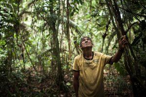 O ribeirinho Chico Catitu se aliou aos munduruku para a abertura da picada. Foto: Marcio Isensee e Sá