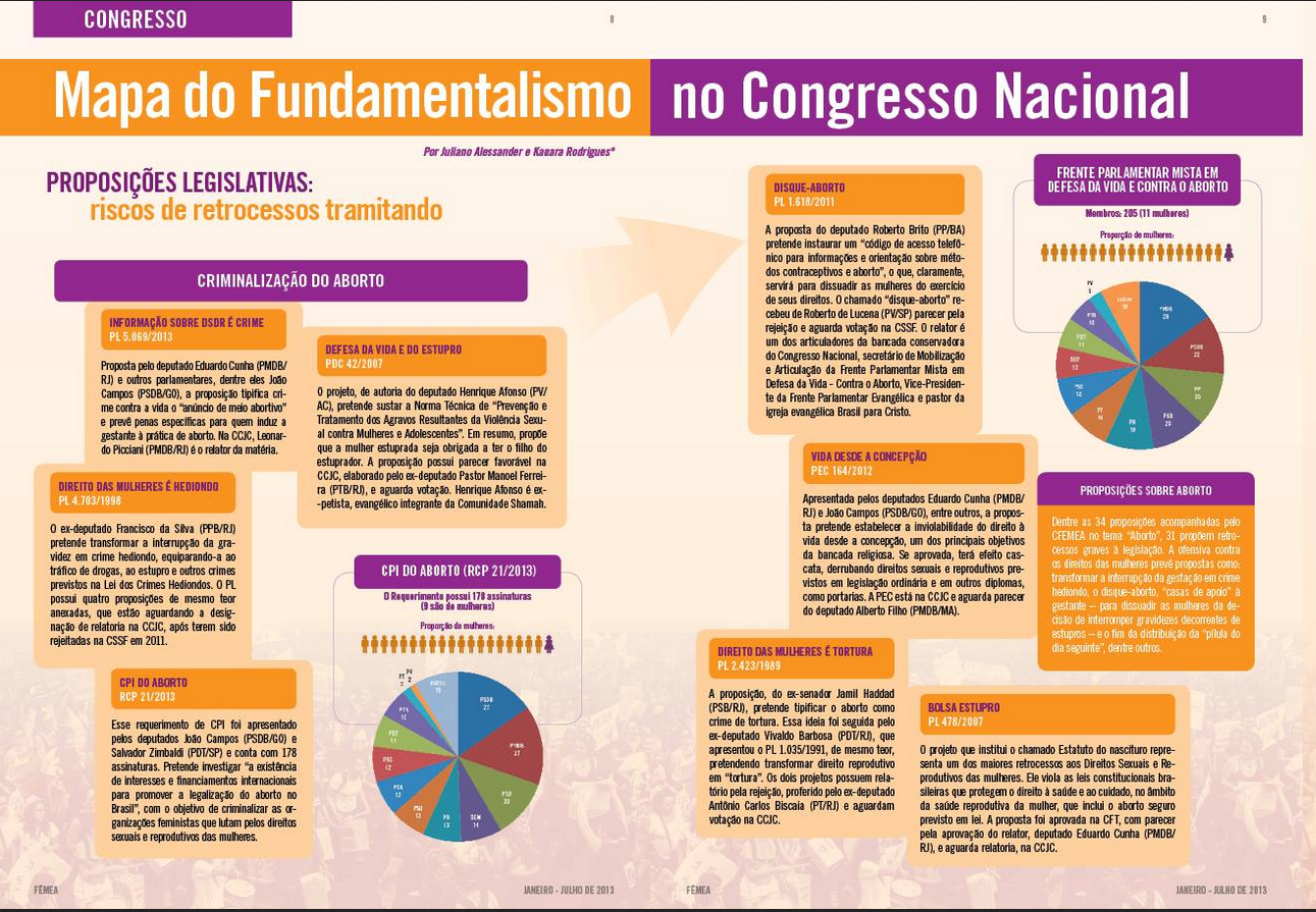Fonte: Centro Feminista de Estudos e Assessoria (CFemea)