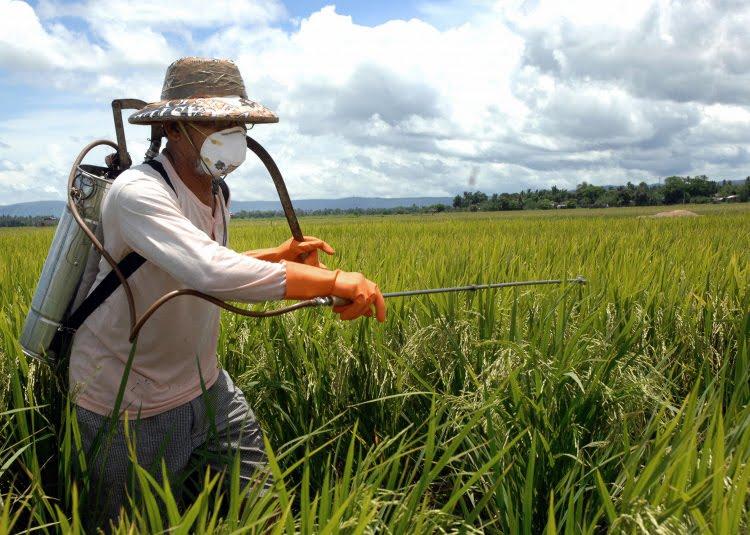 Governo Bolsonaro libera mais 42 agrotóxicos e país se torna depósito de rejeitos da Europa