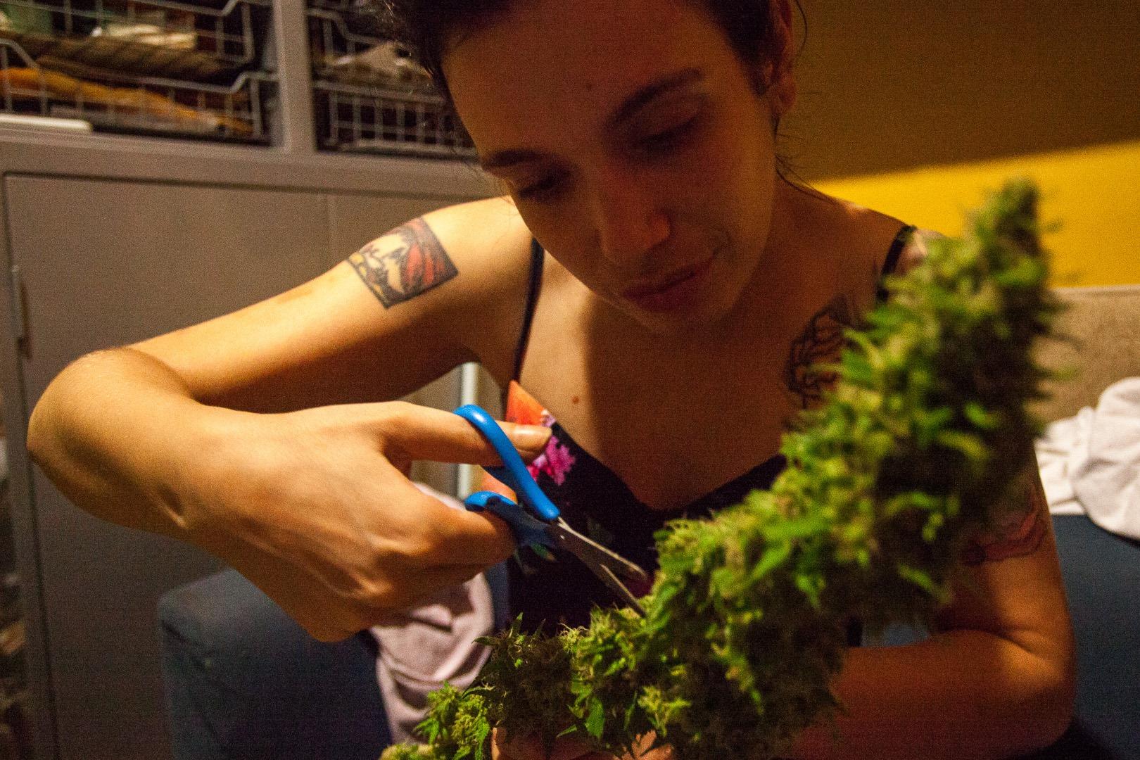 Usuária cuida de suas flores de cultivo caseiro. (Foto: Growroom)