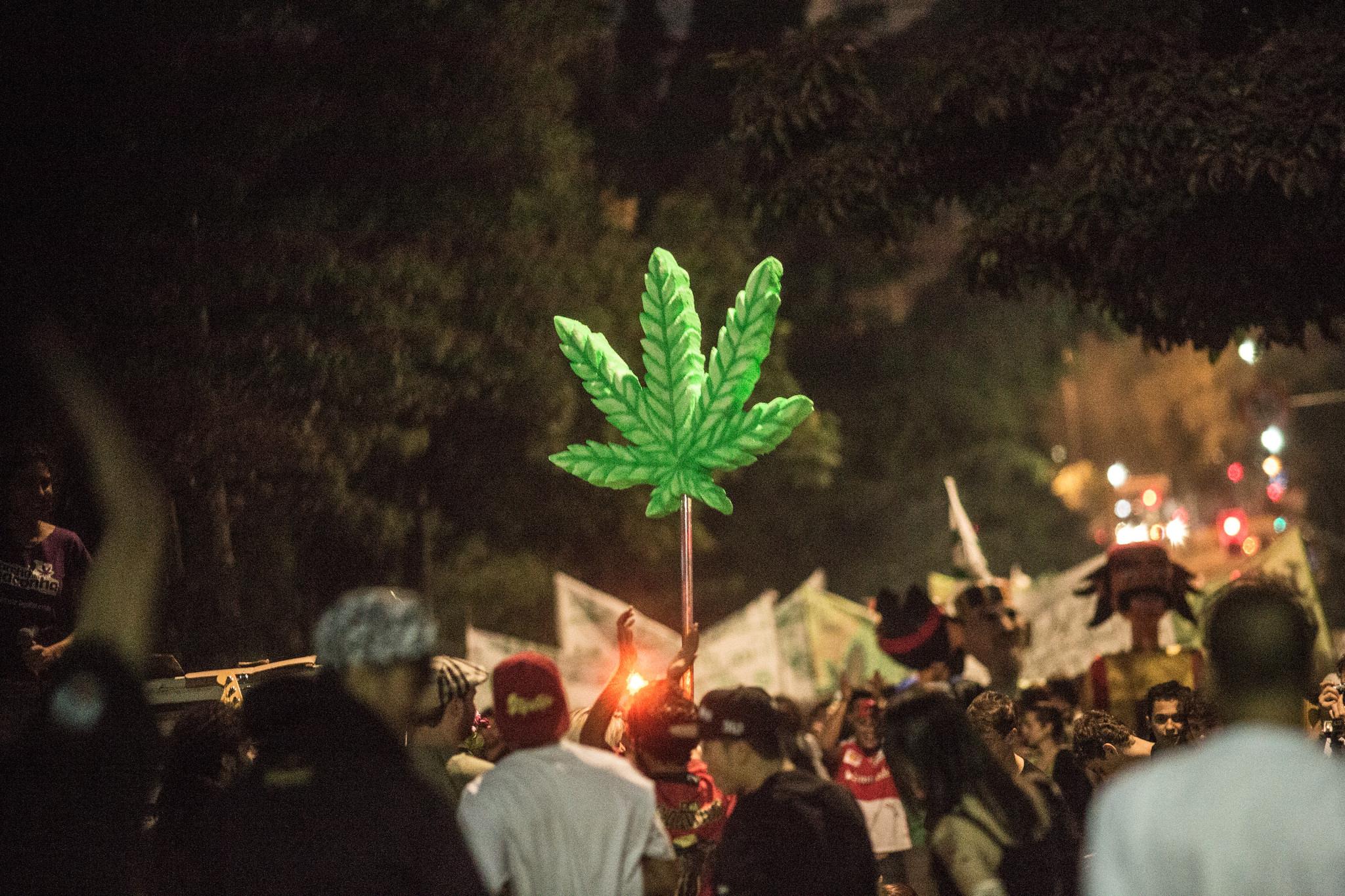 A pesquisa aponta que dos entrevistados são a favor da legalização da maconha (Foto: Mídia NINJA)