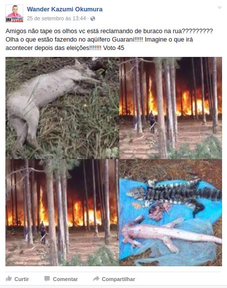 Postagem acusando os acampados de matarem animais silvestres usando fotos falsas