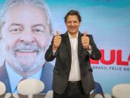 Pesquisa DataPoder360 aponta empate técnico entre Bolsonaro e Haddad