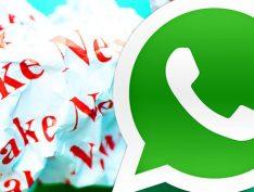 Para integrantes do MPE, ação contra Bolsonaro por uso de WhatsApp nas eleições deve ser arquivada