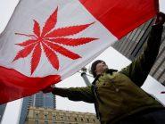 Venda de maconha legal no Canadá gera R$533 milhões em impostos para governo