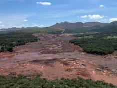 Rejeitos contaminados pela Vale em Brumadinho atingem rio São Francisco e provocam morte de peixes