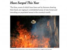 Amazônia em chamas é destaque no NYT, Le Monde, BBC e veículos mais importantes do mundo