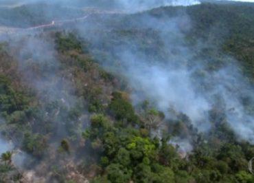 Alemanha já fala em sanções diplomáticas e econômicas ao Brasil em razão da Amazônia