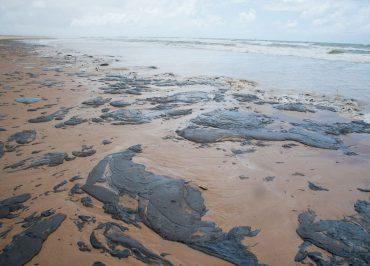 Jornalista da Fórum inicia reportagem especial nas praias do Nordeste poluídas com óleo