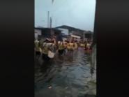 Vídeo: Banda desfila pelas ruas alagadas de São Vicente, litoral de São Paulo