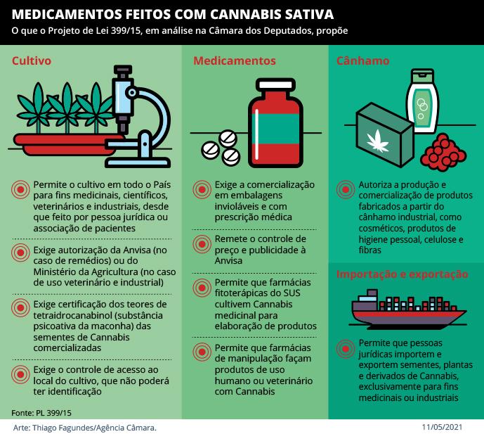 Histórico: apesar de Bolsonaro, Câmara aprova legalização do cultivo e produção de maconha medicinal